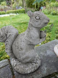 Eichhörnchen - stehend
