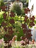 Weinrankenstab mit Kugelabschluss