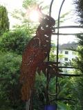 Kakadu auf gebogenem Stab