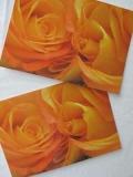 Rosenpostkarte orange