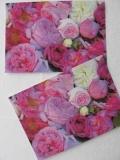 Rosenpostkarte historische Rosen