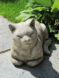 Katze spitzbübisch