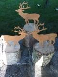 Rost-Hirsche auf Holz
