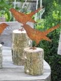 Amsel auf Holzstück