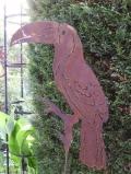 Tukan auf Stab
